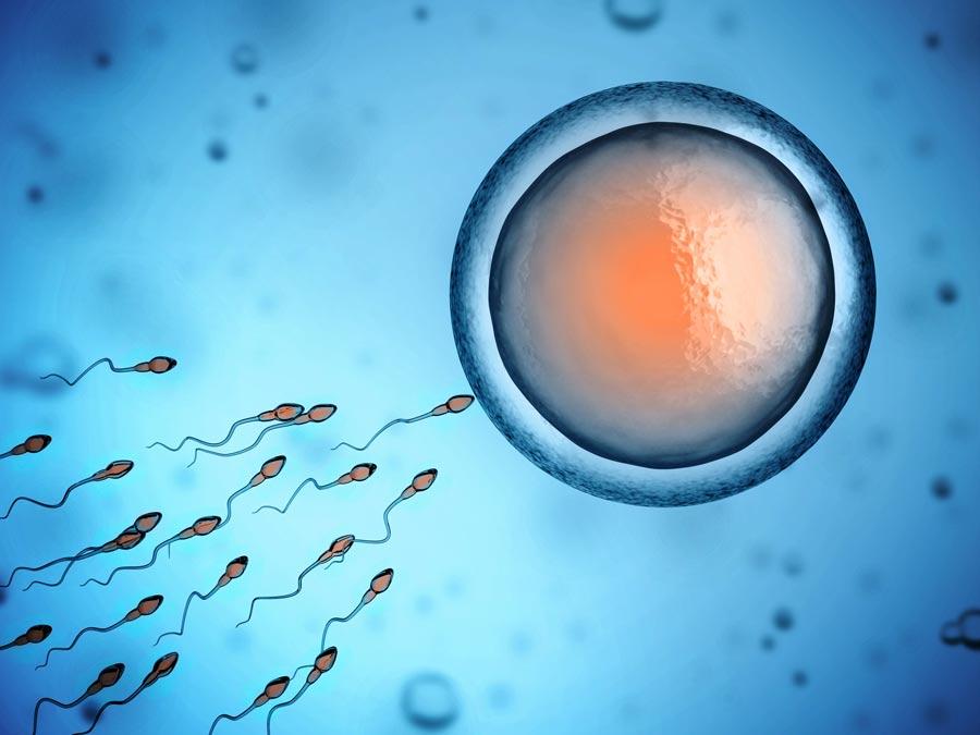 30708680_infertility